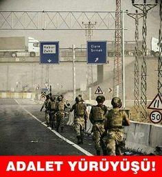 Border Gezi