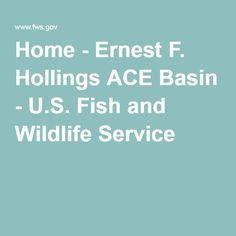 Ernest Hollings