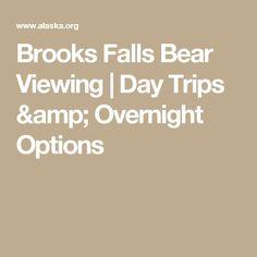 Brooke Falls