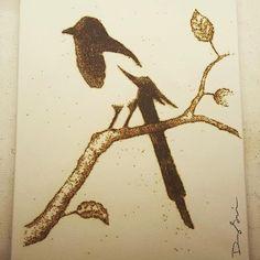 Jackson Bird