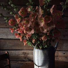 James Gardener